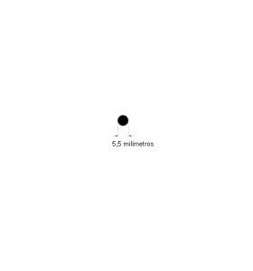 N185 Cordão de borracha maciça 5,5mm 50 metros